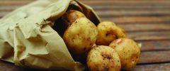 Ziemniak – skarb królów i nędzarzy