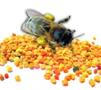 Piękno, zdrowie i tajemnicza pyłku kwiatowego