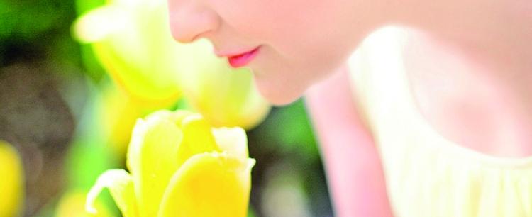 Wiosennie piękna