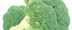 Warzywa i dzikie zioła na talerzu