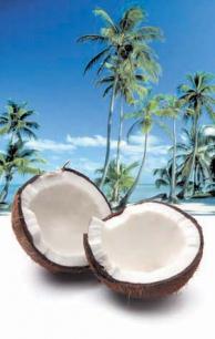 Kokos i olejek kokosowy